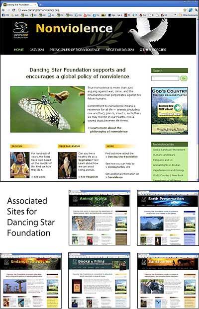 Dancing Star Foundation Sites