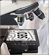 Microscope with word SEO on slide